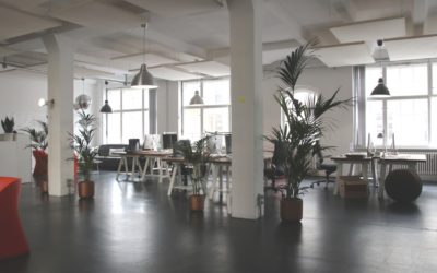How can your office design save money on recruitment? – ABC Money
